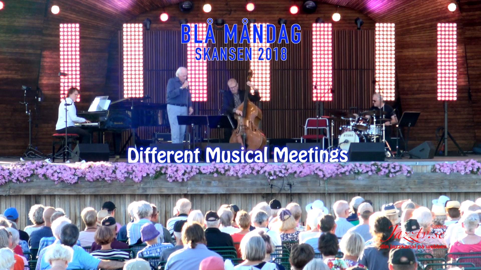 Different Musical Meetings, Skansen 2018